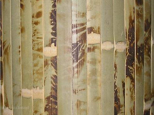 bambukovye-oboi-03