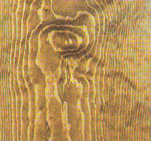 otbelivanie-drevesiny-02