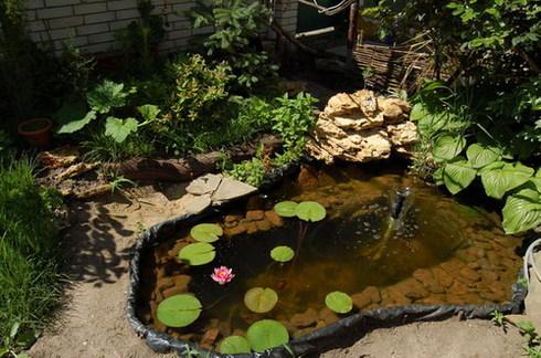 Из чего сделать бассейн на даче своими