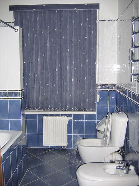 Цвет стен в туалете фото